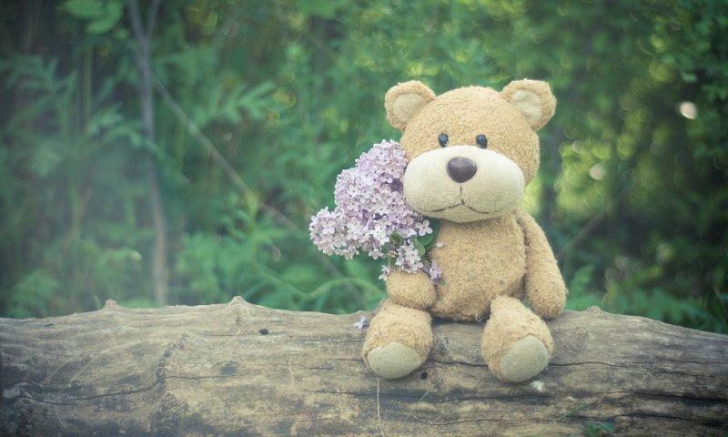 Regala flores