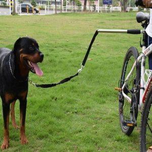 Correa de Perro Manos Libres para Bicicleta